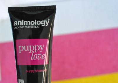 Puppy Love Shampoo